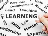 Yurtdışı dil eğitim programları